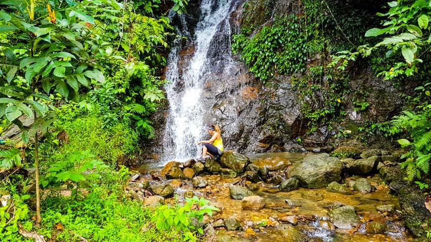 Bukit Lawang Jungle Trek Full Size 8