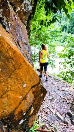 Bukit Lawang Jungle Trek Full Size 9