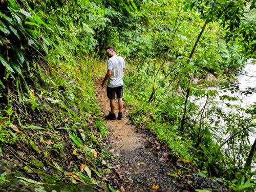 Bukit Lawang Jungle Trek Full Size 21