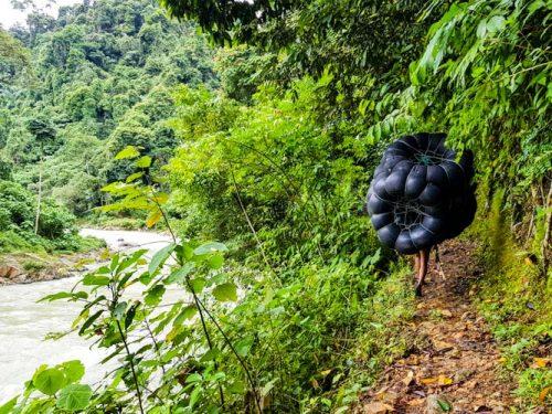Bukit Lawang Jungle Trek Full Size 23