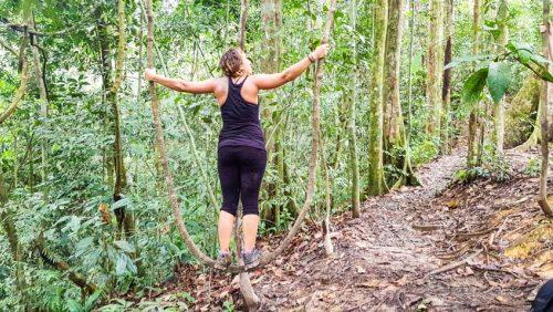 Bukit Lawang Jungle Trek Full Size 47
