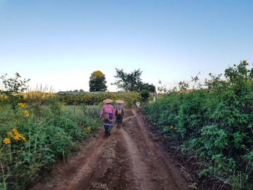 Hsipaw 3Day Trek Firefly Myanmar Smaller 100
