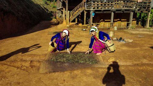 Hsipaw 3Day Trek Firefly Myanmar Smaller 86