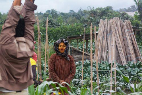 Mount Sinabung Ghost Town Berestagi Sumatra 7