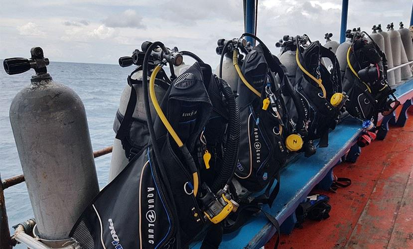 diving.jpg#asset:498